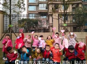 重庆市大渡口区伟才幼儿园:爱护小树苗,我和小树一起成长