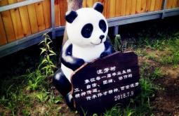 (传承)以爱之名,吉林延边伟才幼儿园流芳树挂牌仪式