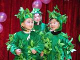 """元旦特辑丨湖北仙桃和合伟才幼儿园:""""迎新年,我又长大了一岁""""成长见证会"""