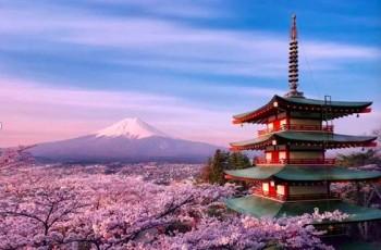 伟才环保主题日本亲子游学团,一起出发吧!